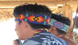 Estudos do Componente Indígena - ECI